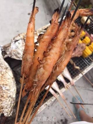 烧烤的做法_烧烤怎么做_新月融水的菜谱