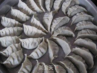 鸡蛋韭菜饺的做法_鸡蛋韭菜饺怎么做_菜谱