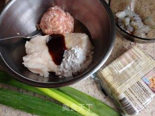简易煎饺的做法_简易煎饺怎么做_lq80848084的菜谱