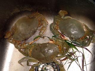 水蟹粥的做法_水蟹粥怎么做_菜谱