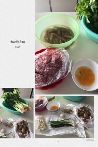 芹菜虾肉水饺的做法_芹菜虾肉水饺怎么做_seiseizhang的菜谱