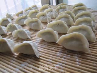 韭菜虾仁水饺的做法_韭菜虾仁水饺怎么做_(纳尼亚)的菜谱
