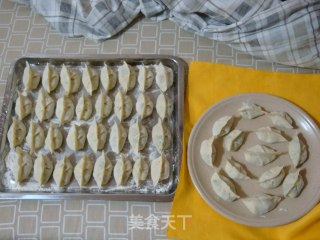 虾仁韭菜饺子的做法_虾仁蛤喇肉韭菜饺子_虾仁韭菜饺子怎么做_菜谱