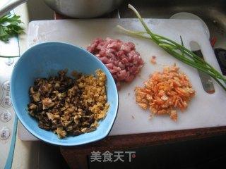 红萝卜虾仁饺的做法_红萝卜虾仁饺怎么做_菜谱