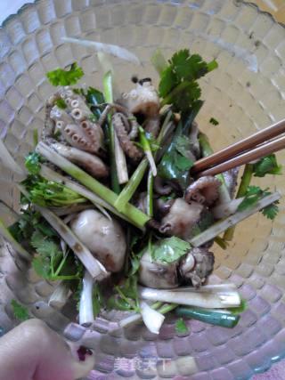 凉拌章鱼的做法_凉拌章鱼怎么做_做好饭等你回来的菜谱