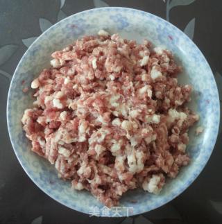 鱿鱼韭菜水饺的做法_鱿鱼韭菜水饺怎么做_张雨琪的菜谱