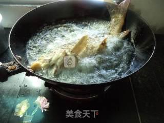 豆瓣酱烧鲤鱼的做法_豆瓣酱烧鲤鱼怎么做_水青青的菜谱
