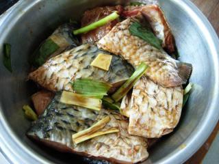 香煎鲤鱼的做法_地道的渔家干煎鱼--香煎鲤鱼_香煎鲤鱼怎么做_晶制人生的菜谱