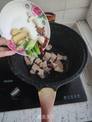 家常红烧鲤鱼的做法_家常红烧鲤鱼怎么做_彩诺的菜谱