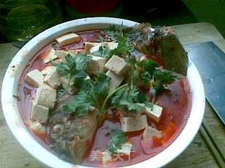 鲤鱼烧豆腐的做法_鲤鱼烧豆腐怎么做