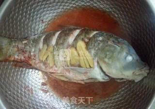 清蒸鲤鱼的做法_清蒸鲤鱼怎么做_婧-椛氺冄的菜谱