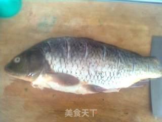 鲤鱼炖茄子的做法_鲤鱼炖茄子怎么做