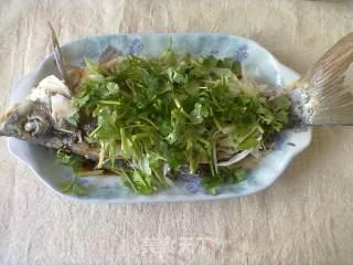 油浇鱼的做法_油浇鱼怎么做_雾浣的菜谱